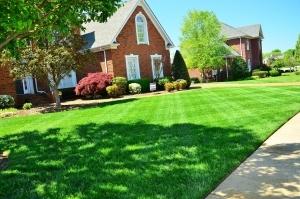 HOA lawn care