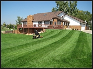 residential lawn mowing