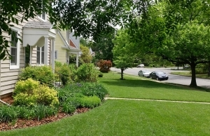 residential-lawn-care
